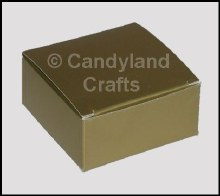 Maxi Gold Lustre Box/5