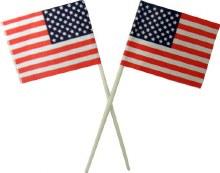 American Flag Picks 4'/12