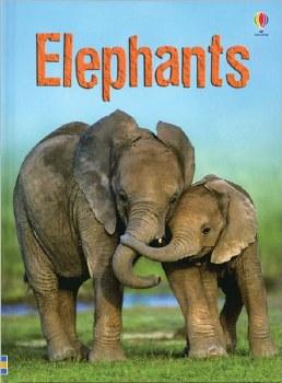 Elephants Hardback Book