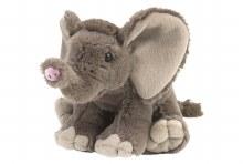 Mini Baby African Elephant