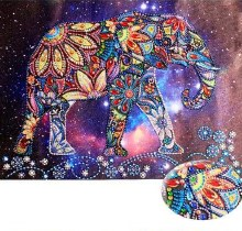 Elephant In The Universe