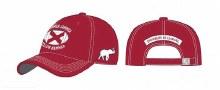 Flag Football Twill Hat