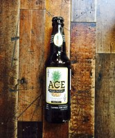 Ace Pineapple Cider - 12oz