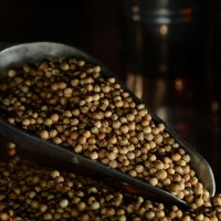 Coriander Seed - 1oz