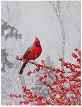 Lighted Print - Cardinal on Branch