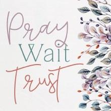 Block Pray Wait Trust