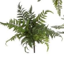 Fern Bush Large (c)