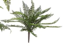 Fern Bush Large (a)