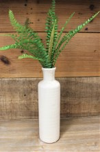 Bottle Cream 10""