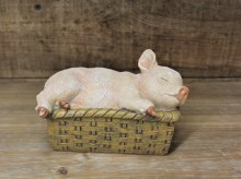 Pig In Wicker Basket Solid