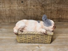 Pig In Wicker Basket Spotted