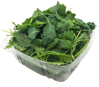 Baby Tuscan Kale (1/4 lb)