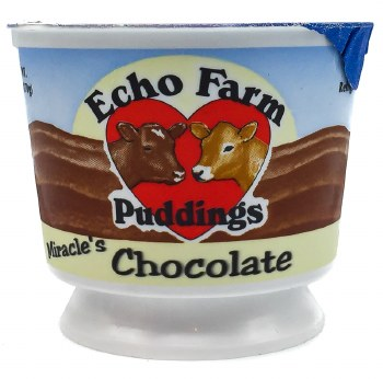 Chocolate Pudding 6oz