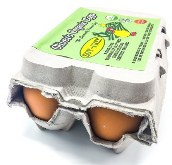 Organic Eggs Half Dozen