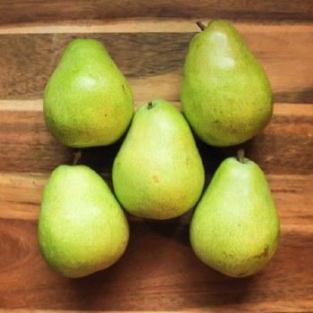 Green D'Anjou Pear