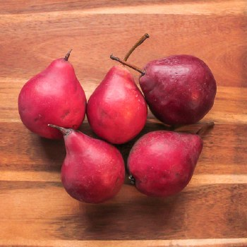 Red Clapp Pear