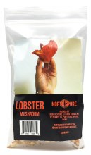 Dried Lobster Mushrooms 28g