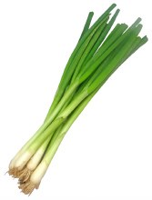 Scallion Onion