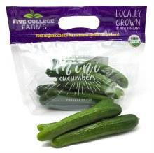 Mini Persian Cucumber 14oz