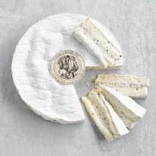 Truffle Brie
