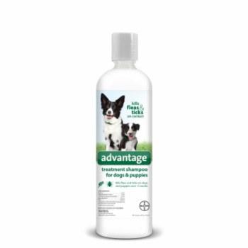 Bayer Advantage Dog Shampoo 8oz