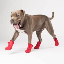 Cp Wellies Lined Dog Boots Med