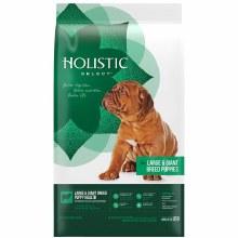 Holistic Select Large & Giant Breed Puppy Lamb & Oatmeal 30#