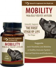 Wl 1st Stage Dog Mobility