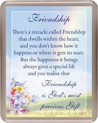 Friendship Fridge Magnet