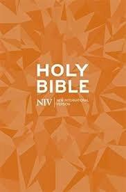 NIV Popular Bible, paperback
