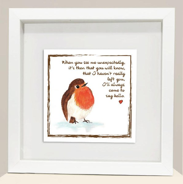 RC007 To Say Hello Red Robin frame