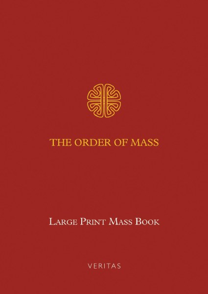 The Order of Mass (Large Print edition)