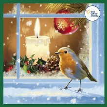 Robin with candle Irish Cancer Box of 12 Cards