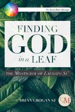 Finding God in a Leaf The Mysticism of Laudato Si