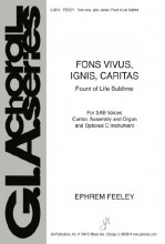 Fons vivus, ignis, caritas / Fount of Life Sublime
