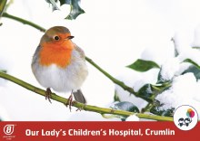 Our Lady's Children's Hospital Crumlin Christmas Cards (Assorted Designs)