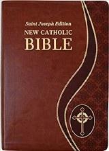 St Joseph New Catholic Bible Giant Type Brown Dura