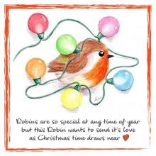 CR001 Christmas Love Robin Card