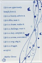 Life is an opportunity Glass Plaque