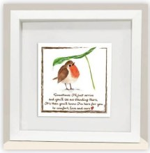 RC002 Love and Care Red Robin Frame