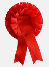Plain Red Confirmation Rosette Small