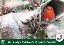 Robins on Boot Crumlin Hospital Box of 12 Cards