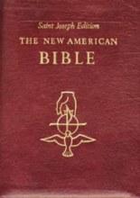 NAB Bible Burgundy Leather with Gold Binding