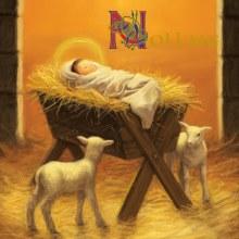 Aware Nativity Box of 10 Charity Cards