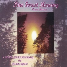 Pine forest Morning Cd