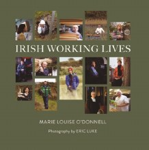 Irish Working Lives