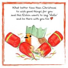 CR008 Christmas Cracker Robin Card