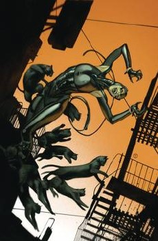 Catwoman #22 Card Stock J T Tedesco Var Ed