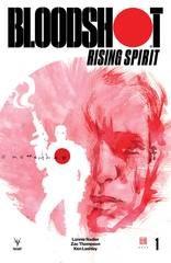 Bloodshot Rising Spirit #1 Cvr B Mack (Net)