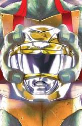 Power Rangers Teenage Mutant Ninja Turtles #2 Cvr C Montes (